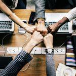 הכלי המרכזי לקידום העסק שלך: פיתוח הצוות